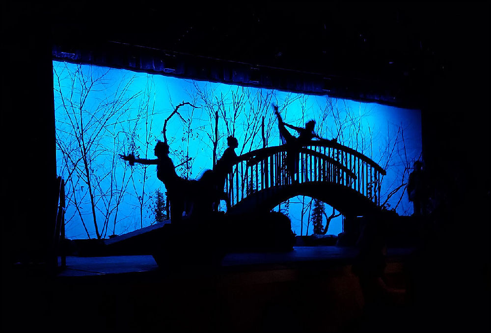 Into the Woods 2x1000.jpg