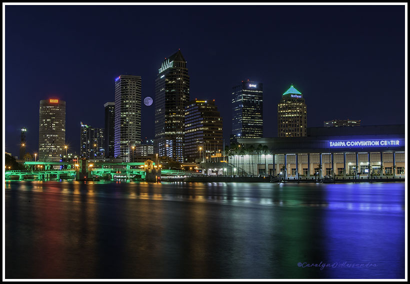 Tampa skyline 2017-113 copy 2.jpg