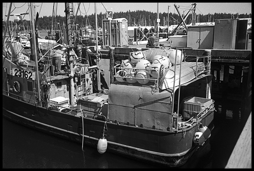 July17Nicca35HP5HD3in386for16min1perminX.jpg