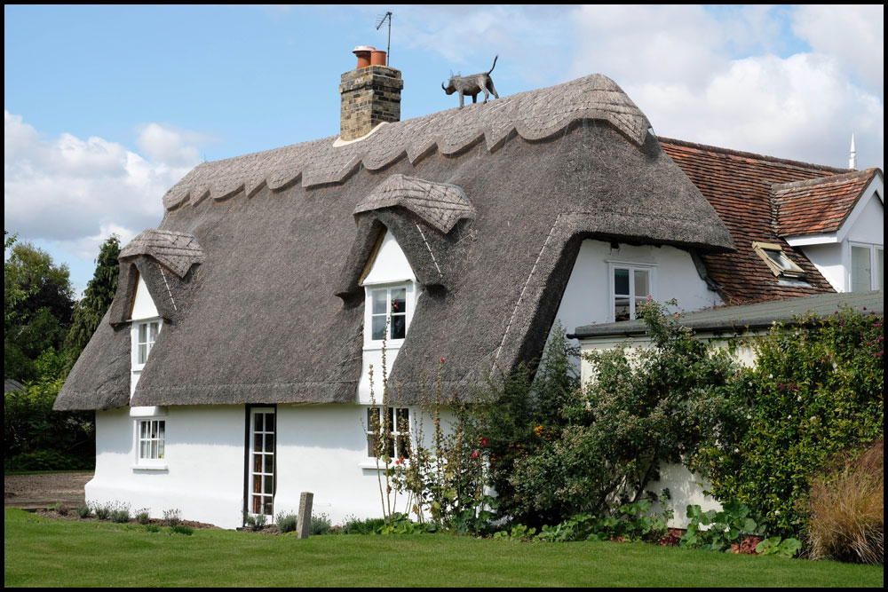 Thatched.jpg