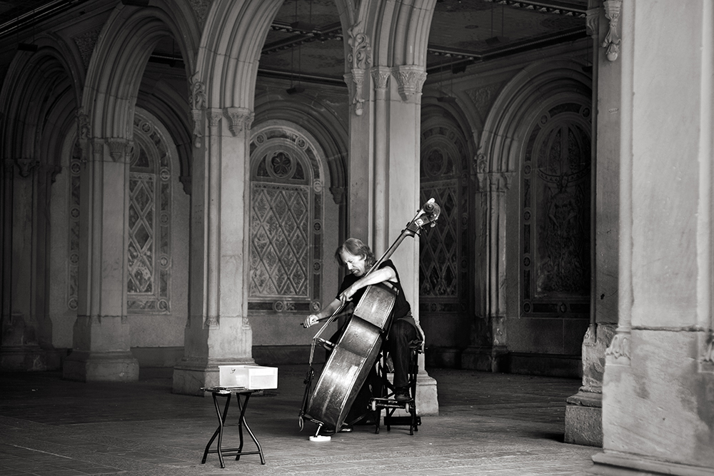 cellist-full_0499-w.jpg
