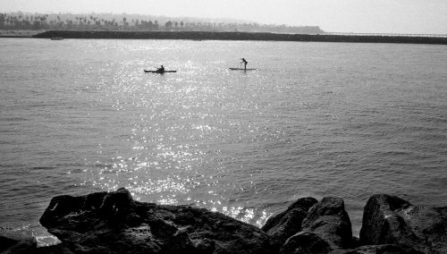 two along the bay.jpg