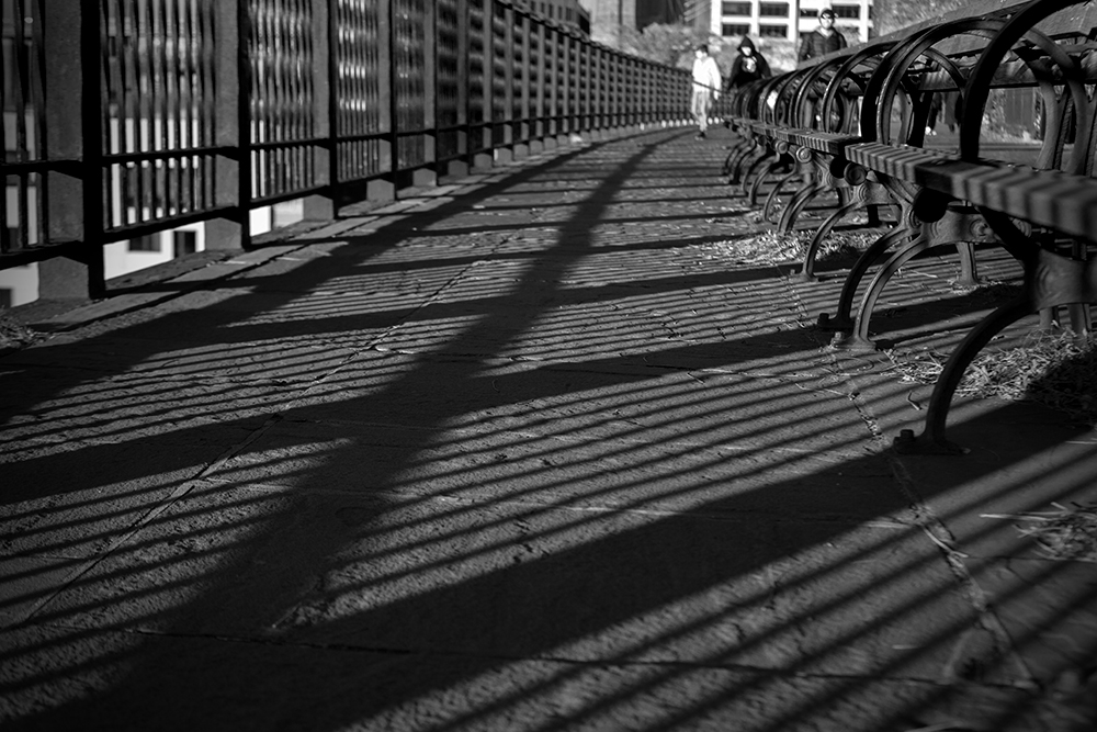 brooklyn-promenade-shadows-benches_9659-w.jpg