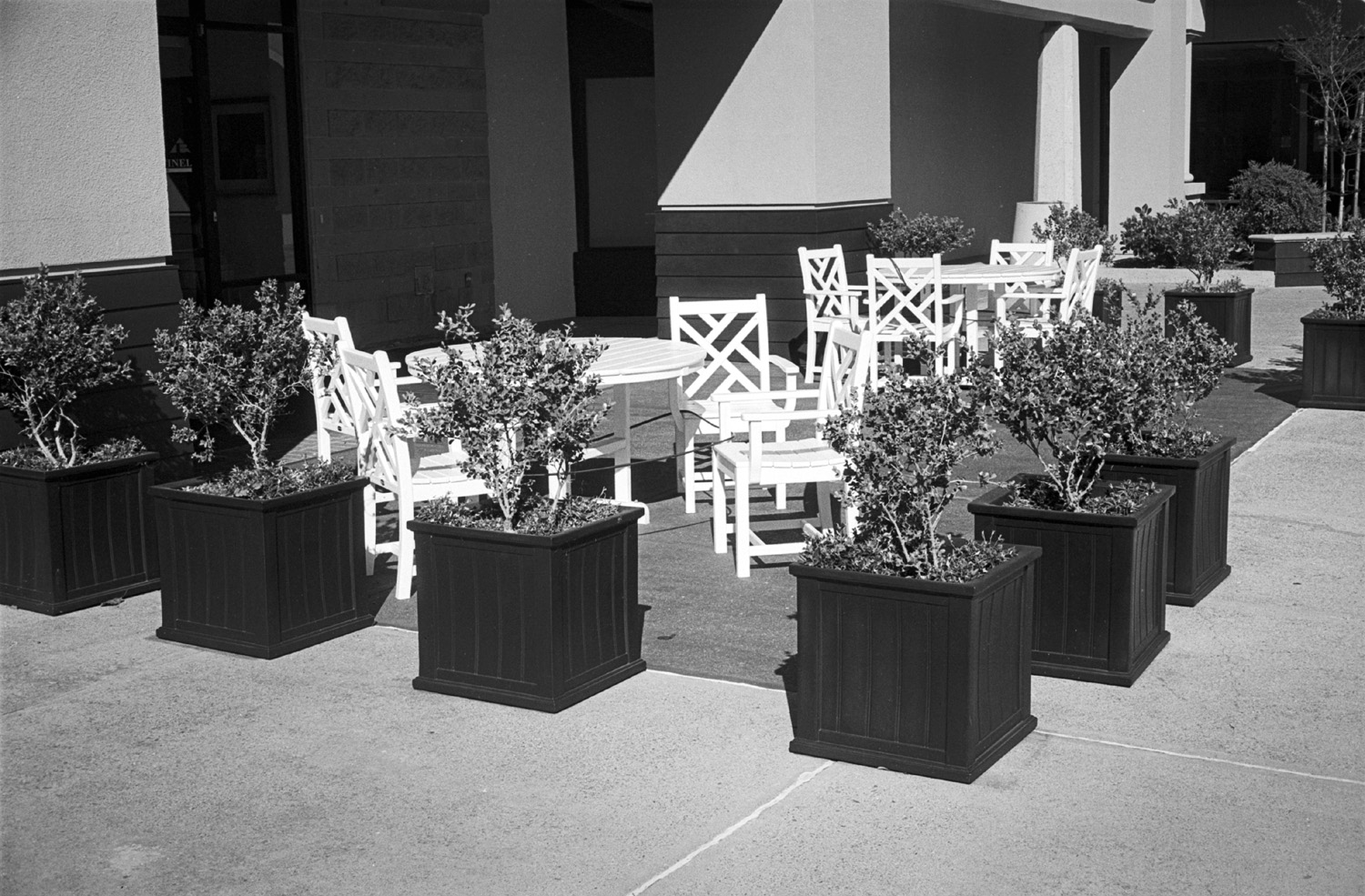 Yashica Electro 35 GSN HP5 Pyrocat HD tables.jpg