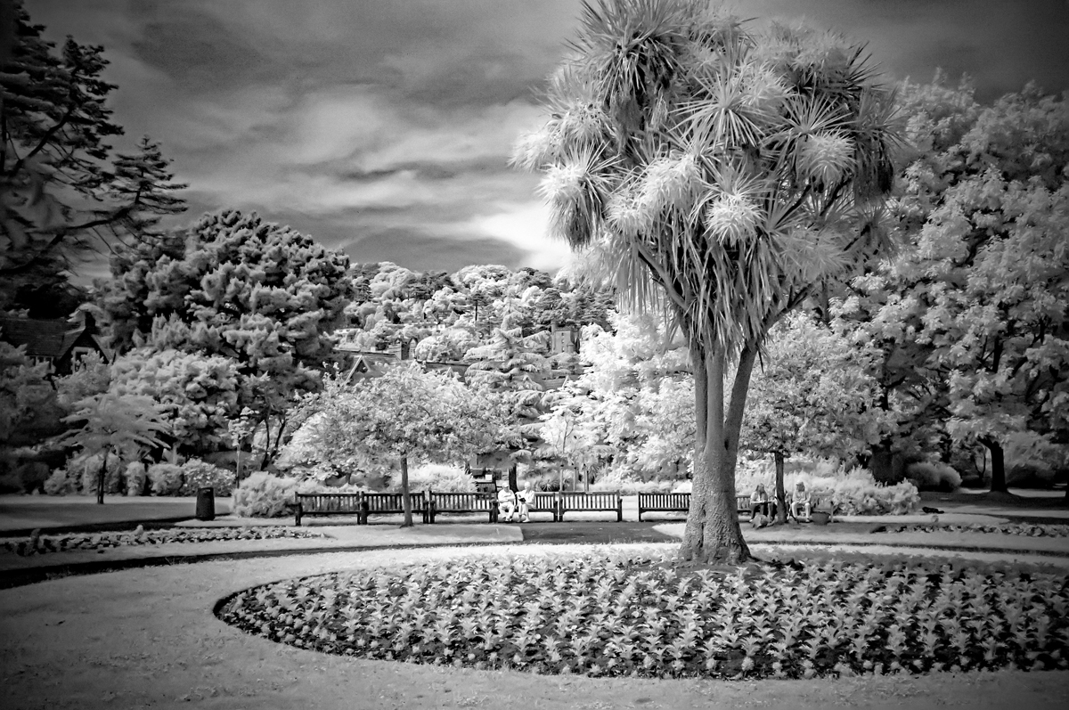 Time in the park-Infrared-web.jpg
