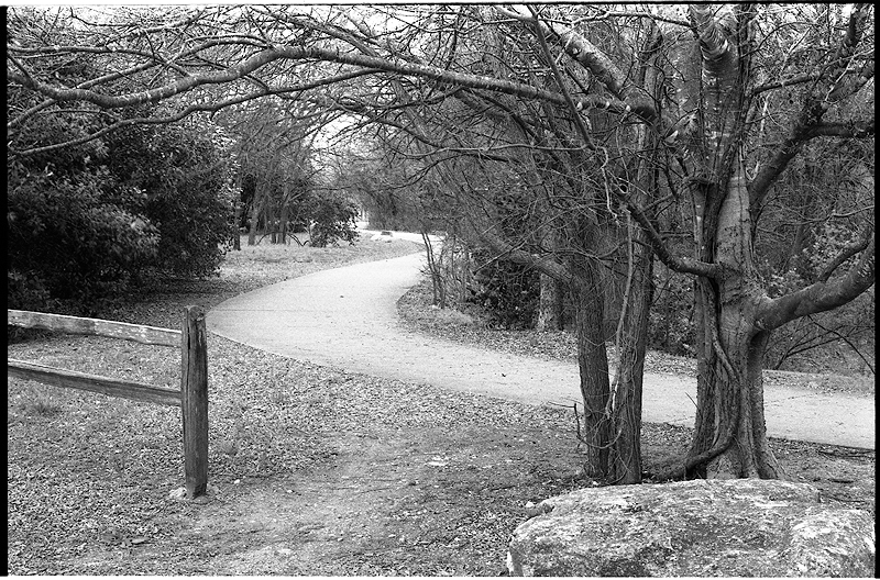 Park-path-Foma-200-50mm-2.jpg