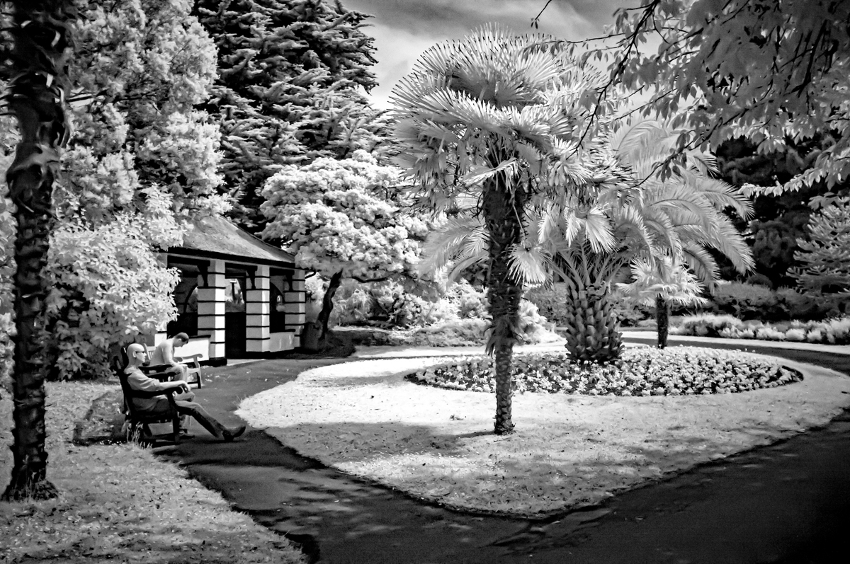 Relaxing in the park-infrared-web.jpg