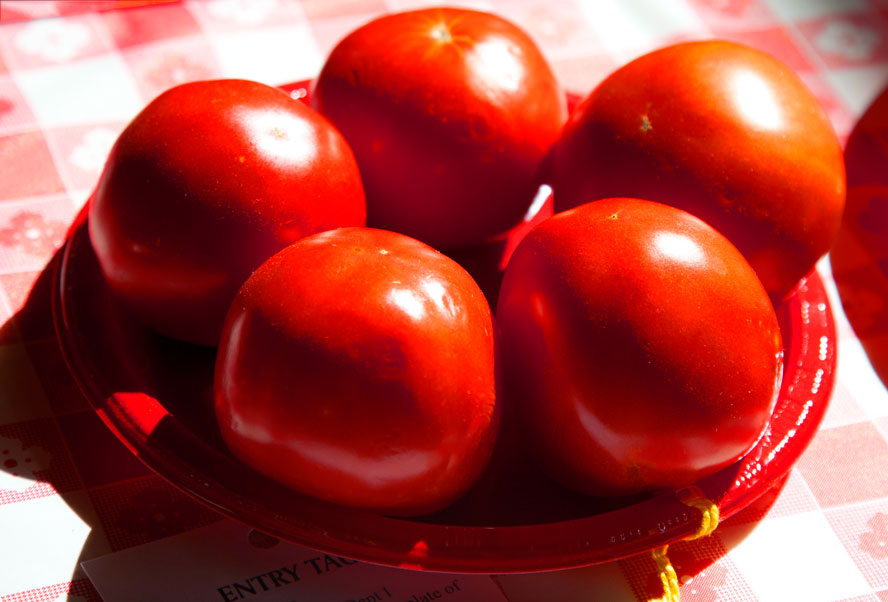DuQuoin-tomatoes.jpg