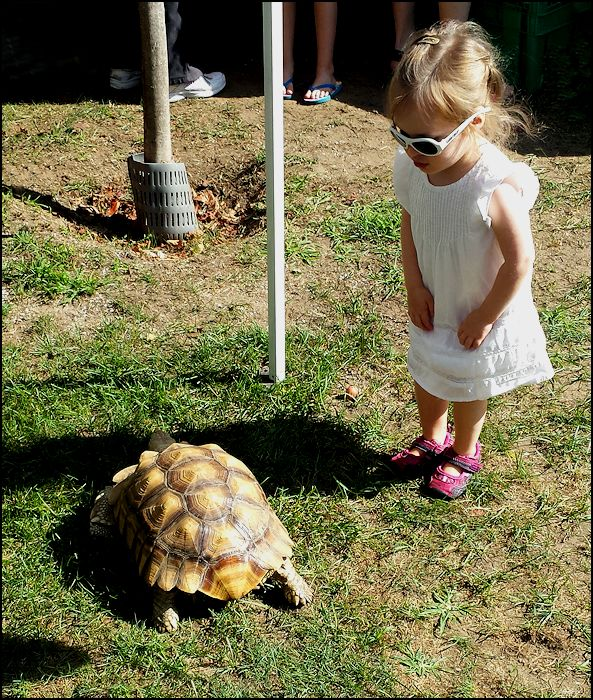 youngster with tortoise x600.jpg