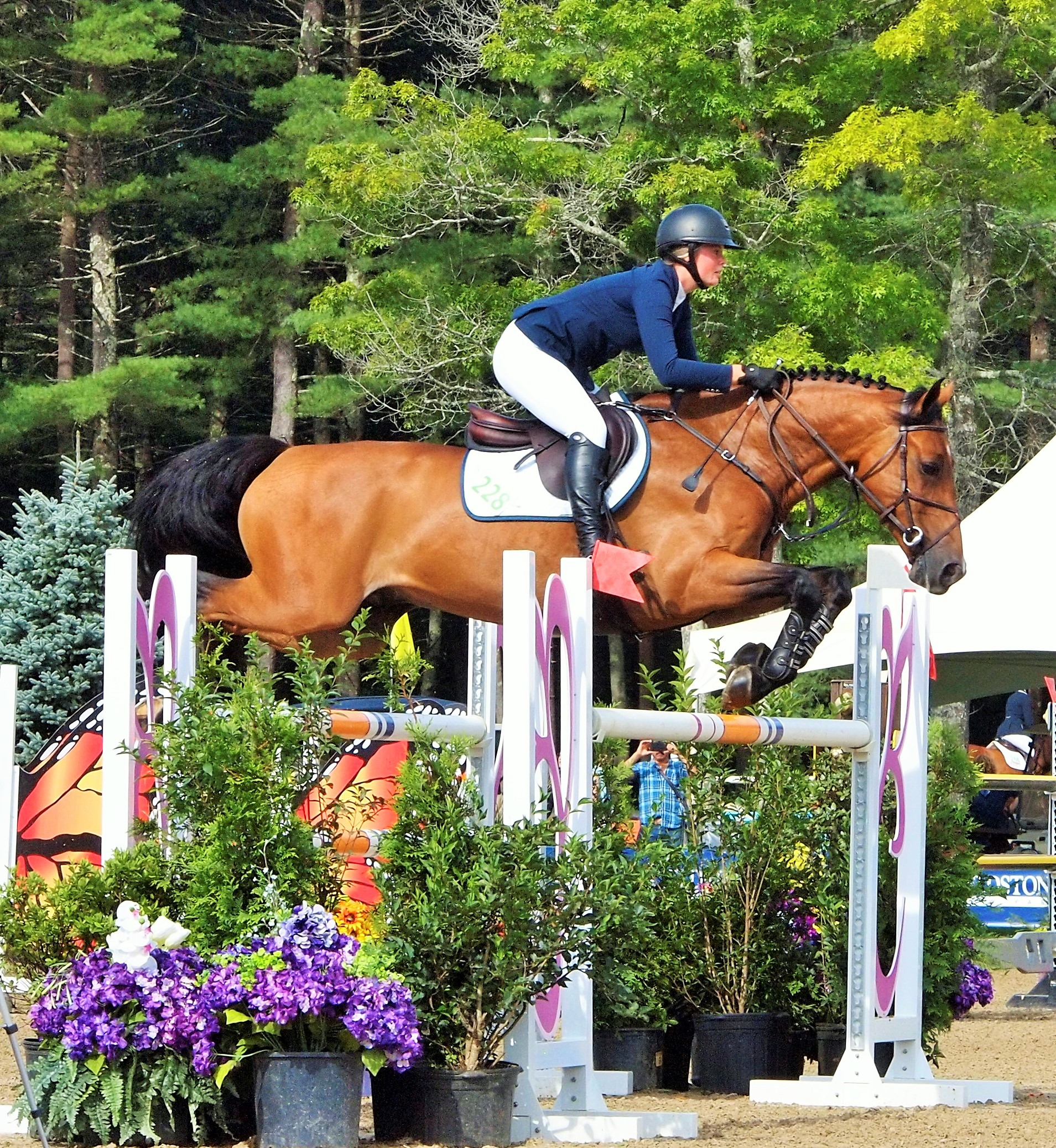 Horse Show Jumping Photography Photo Net Photography Forums