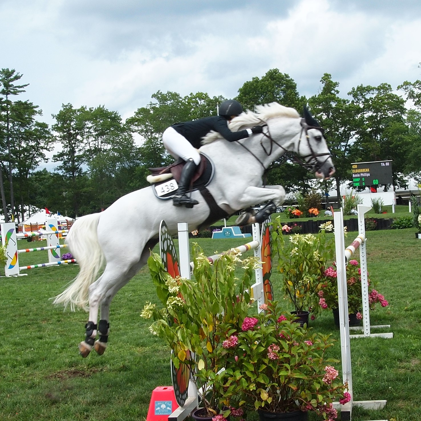 Horse Show Jumping Photography | Photo net Photography Forums