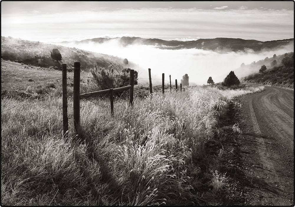 swan valley in fog s.jpg