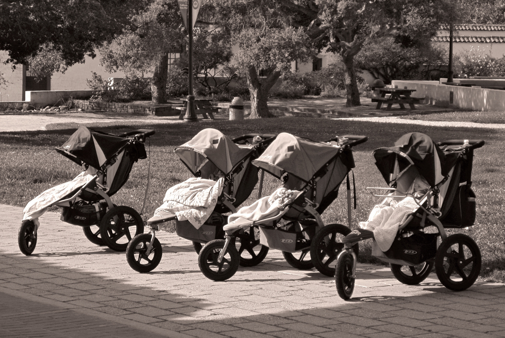 Monterey 09_Baby Carriages.jpg