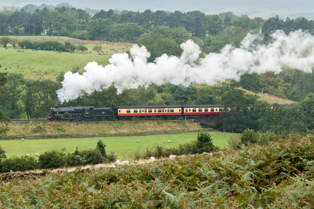 PuffingLoco_C4042-174 (1 of 1).jpg