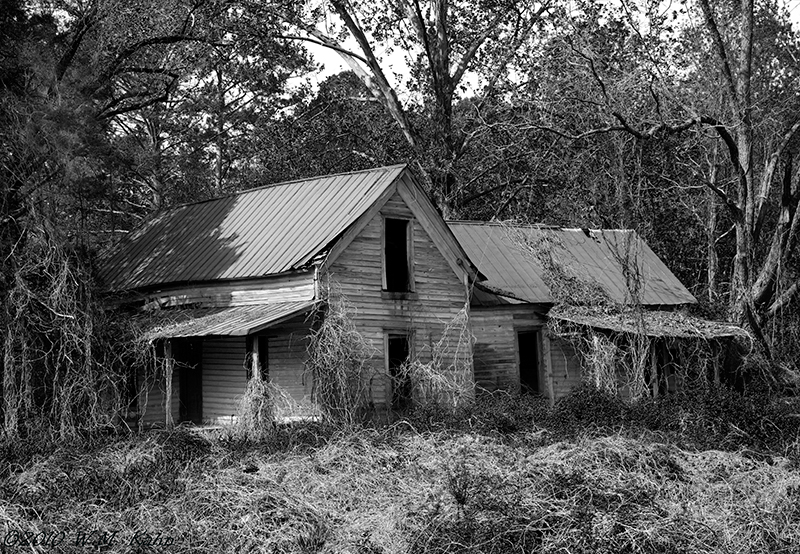 Highway 411 House 4-16-10 C5D11bw.jpg