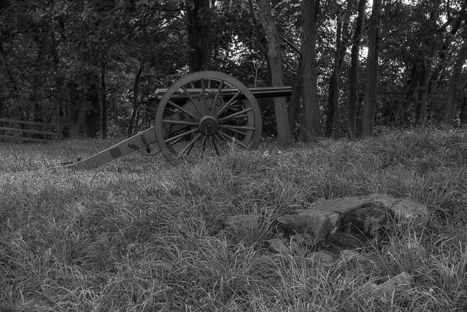 B&W_Canon-in-the-Woods001(2016-08-24-09-59-26).jpg