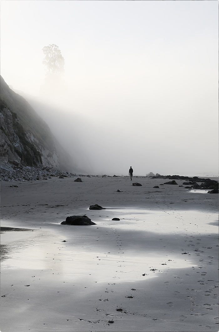 hendrys beach walker in fog.jpg