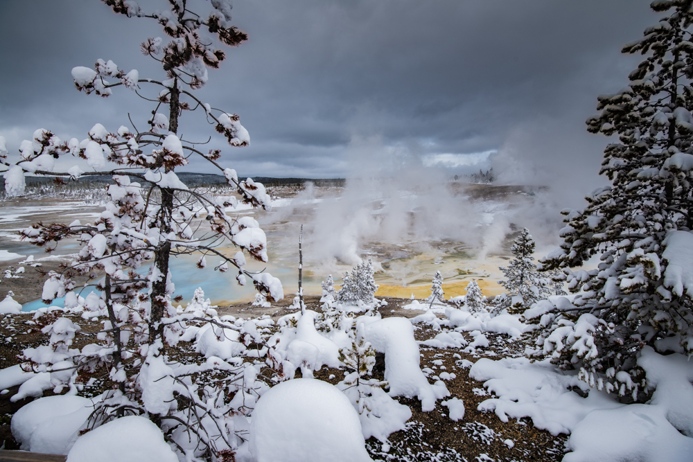 Yellowstone Thermal.jpg