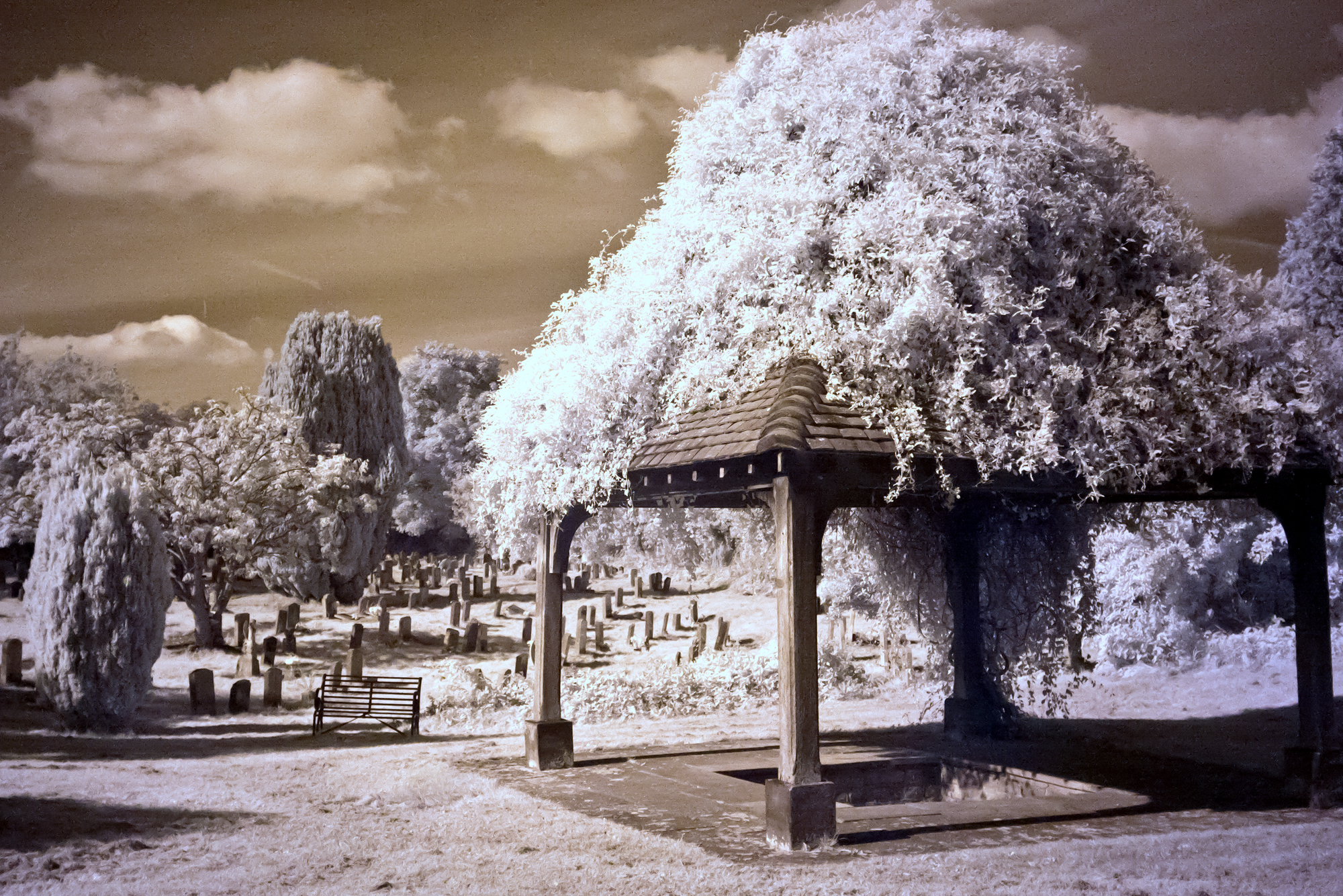 St Chads well-infrared-web.jpg