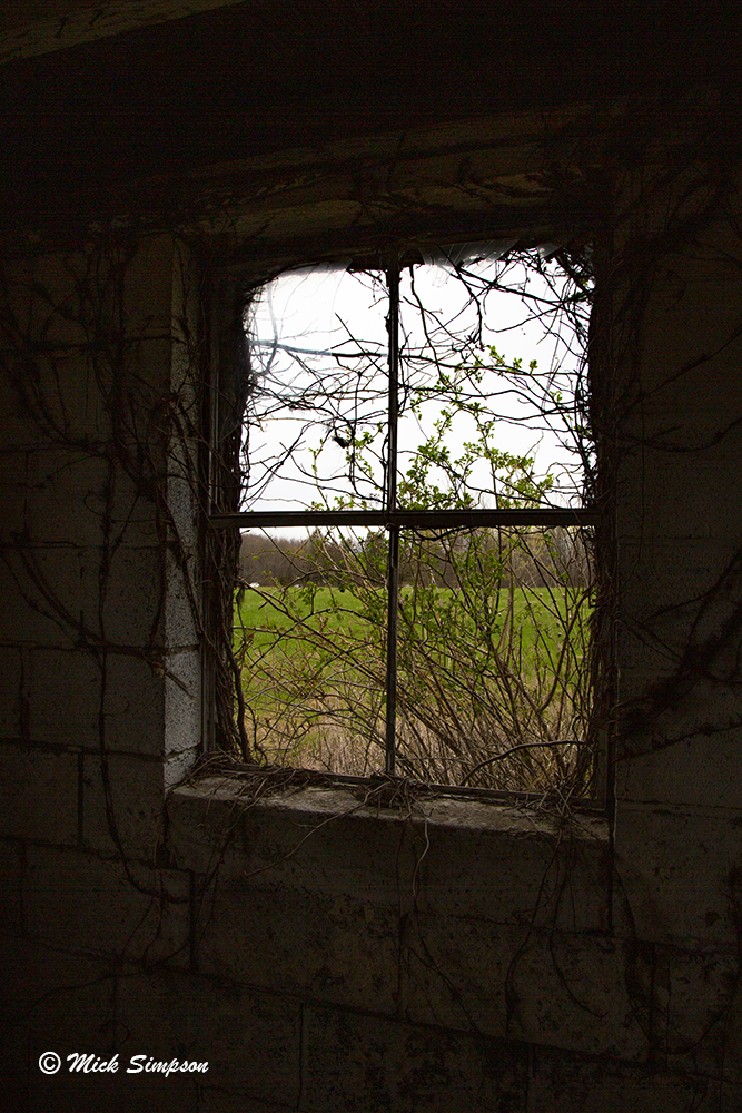 20170424 5DM32525 Looking out from inside abandoned barn in Hawley PA MWS C V1.jpg