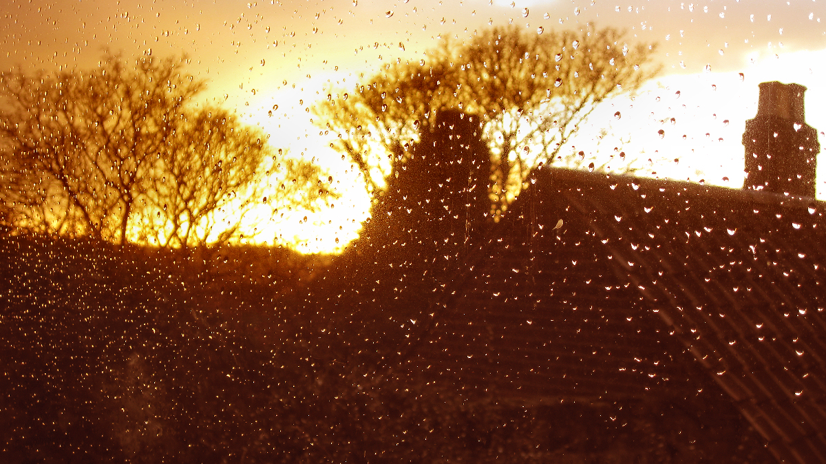 IMG_0475 - after the storm.jpg